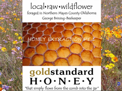 honey-extraction-video